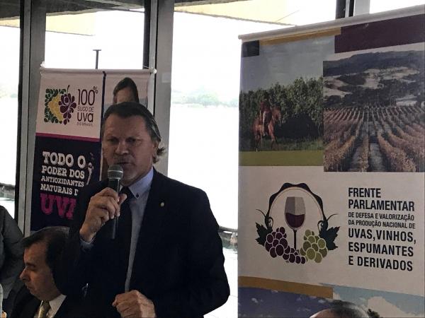 Deputado Afonso Hamm é o novo presidente da Frente Parlamentar da Uva e do Vinho