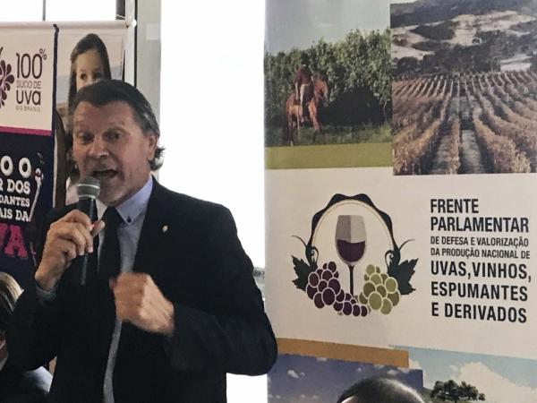 Frente Parlamentar de apoio à vitivinicultura realiza Audiência Pública na Tecnovitis 2017